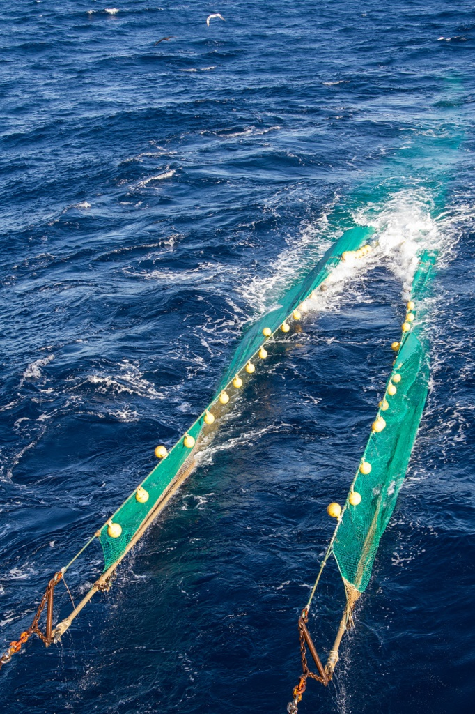 Ловля рыбы тралом