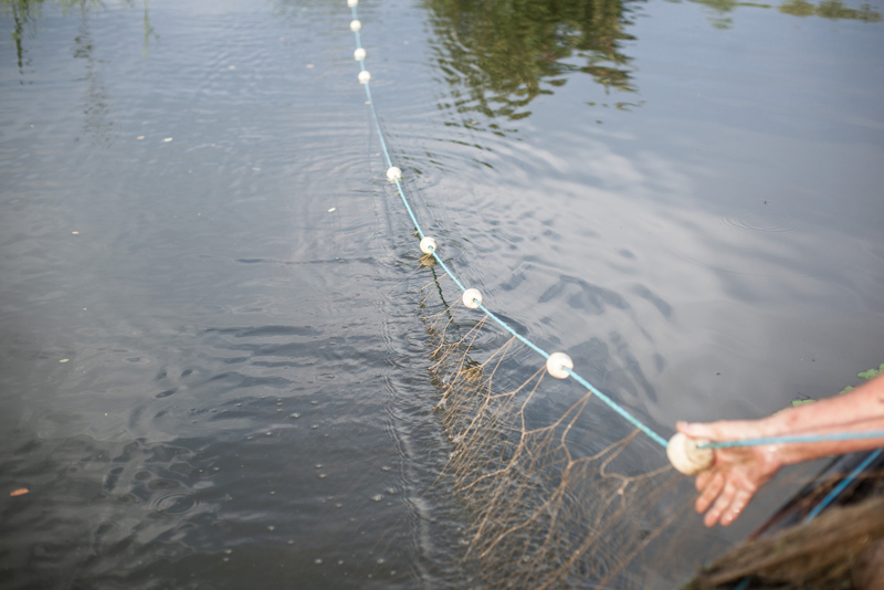 путанка рыбная